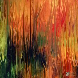 new-abstract-art-artist-diana-torok-4