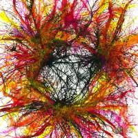 Abstract-Art-Rainbow Artist-Orlando-L-1